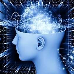 Avoid Brain Overload